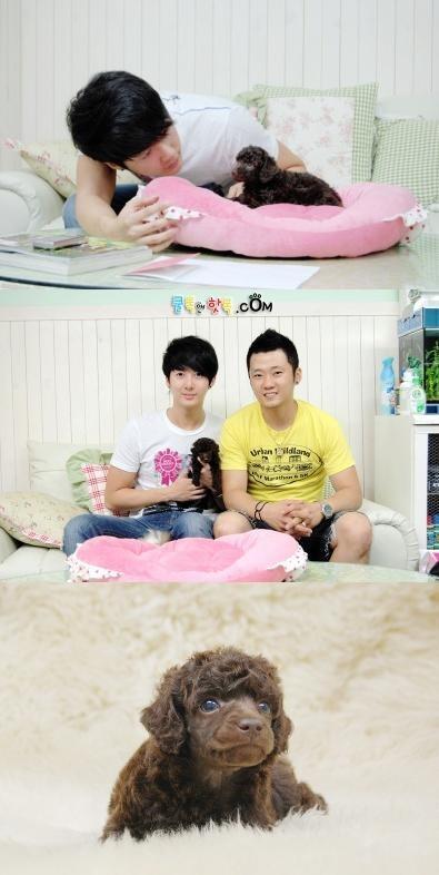 Kim Hyung Joon's pet